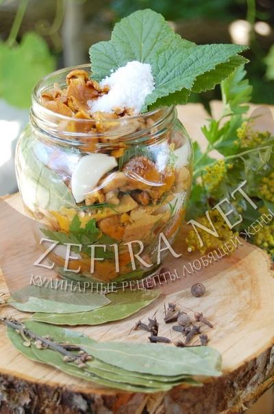 Соленые лисички - рецепт и фото