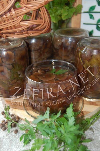 Вкусные маринованные опята на зиму - рецепт и фото