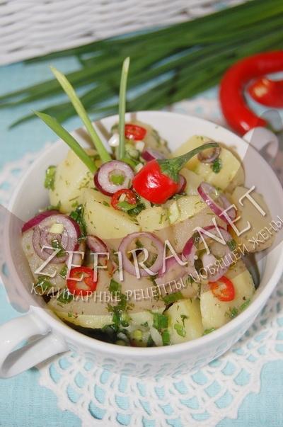 Картофельный салат с луком и зеленью - рецепт и фото