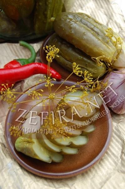 Соленые огурцы на зиму холодным способом - рецепт и фото
