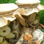 Маринованные на зиму грибы подосиновики