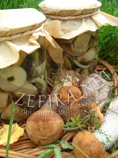 Маринованные на зиму грибы подосиновики - рецепт и фото