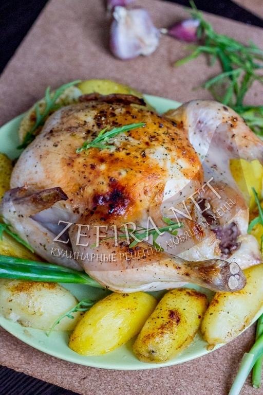 Курица, запечённая целиком с картошкой в духовке - рецепт и фото